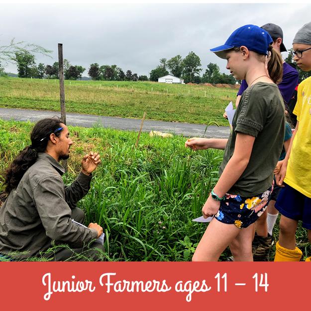 Junior Farmers